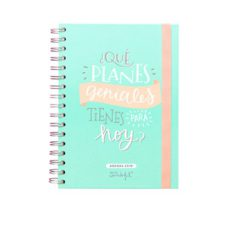 Agenda - Mr. Wonderful